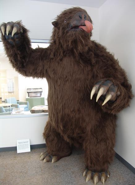 creepy sloth face
