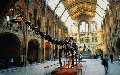 The main hall of the Natural History Museum, London