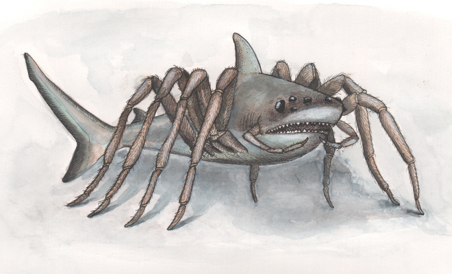 Jawsius charlottei (Illustration: Calene Luczo)