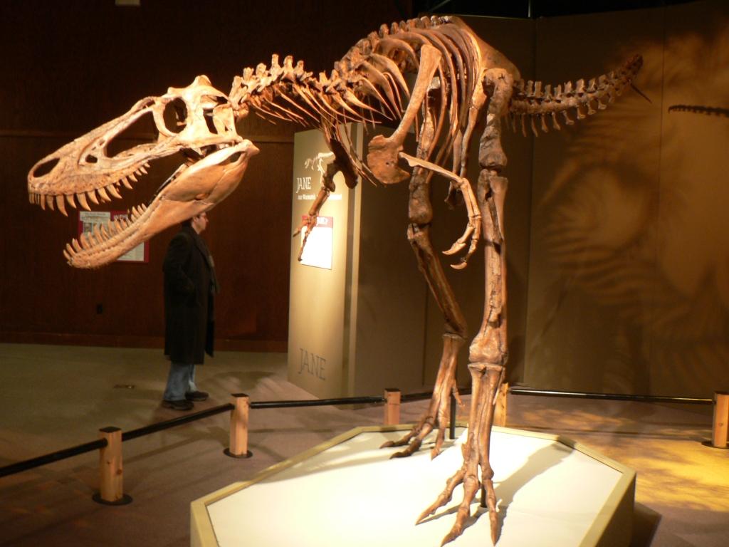 Jane_Tyrannosaurus