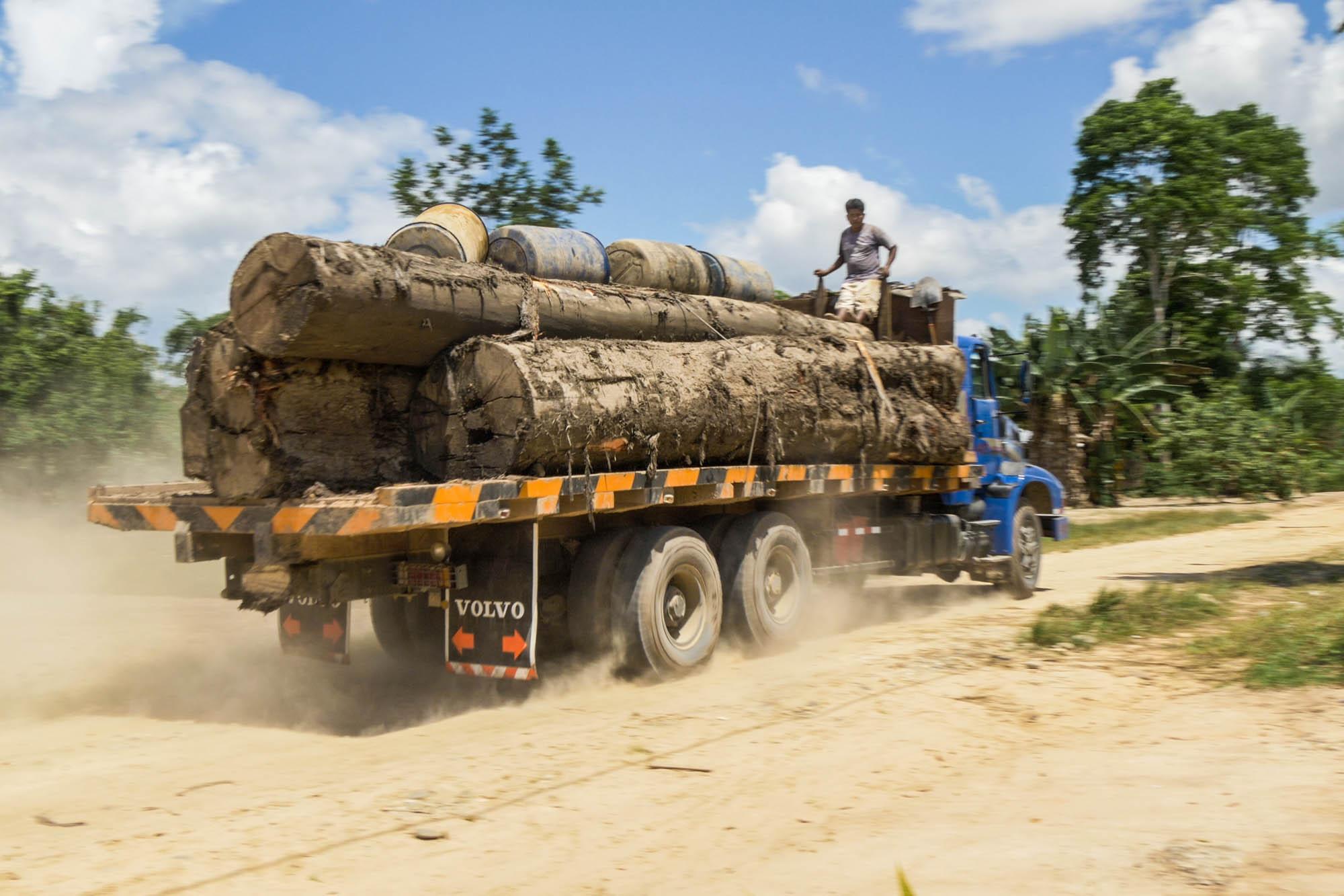camion-transportando-madera-eia